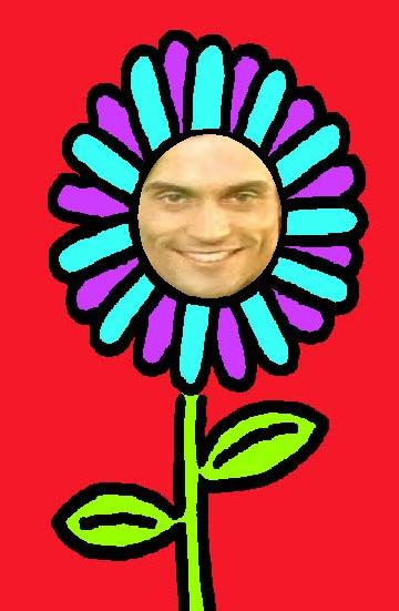 Flower Dar
